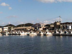 港に停泊中の漁船